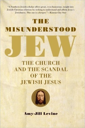 The Misunderstood Jew book cover
