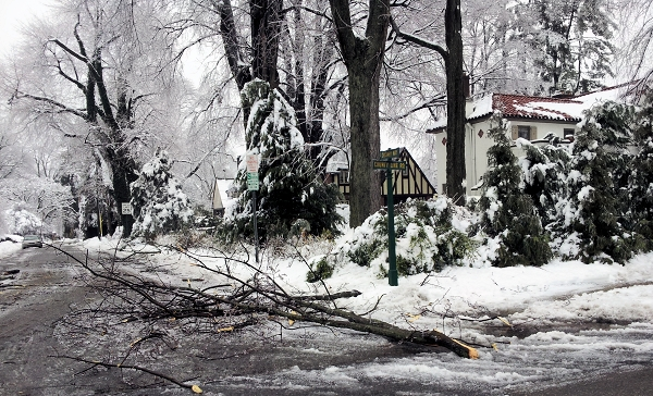 Philly Ice Storm 2014 - Photo by Marg Herder