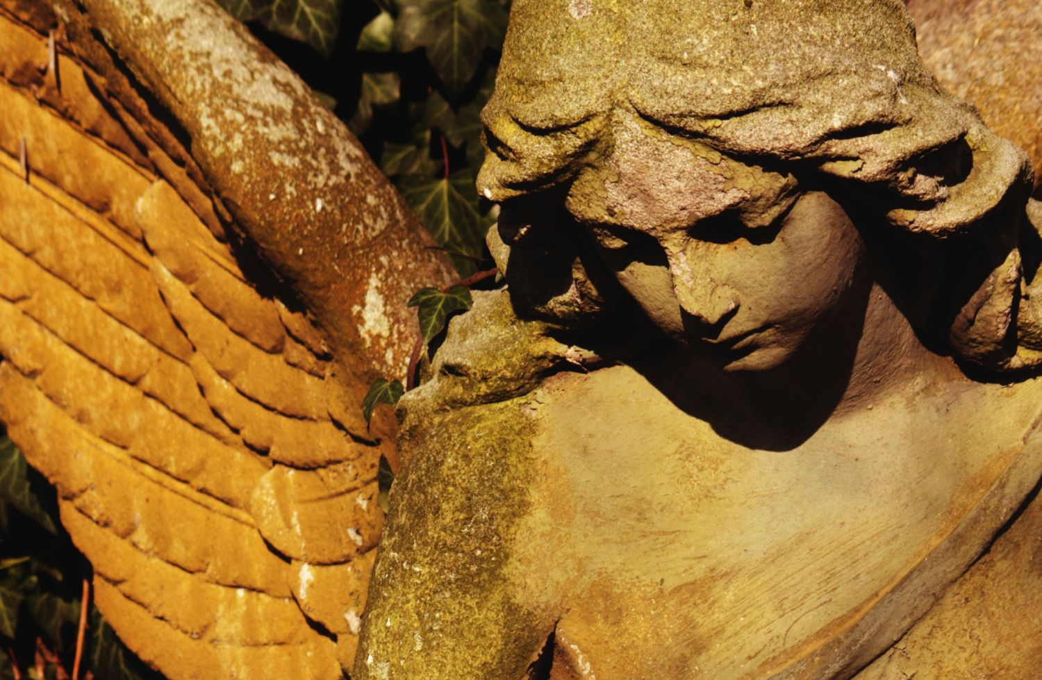 Because of the Angels?   FAQ Blog   Christian Feminism Today