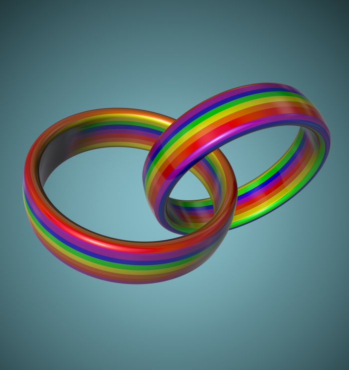LGBT Wedding Rings by Oxana Stepanova